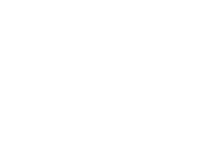 Styles of Distinction